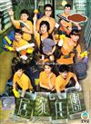 The Home Troopers (DVD) Hong Kong TV Drama