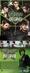 SS501 Begins! 5th Anniversary DVD Box II (DVD) Korean Music Video
